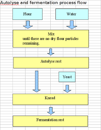 Autolyse and Primoferment Flow Chart.