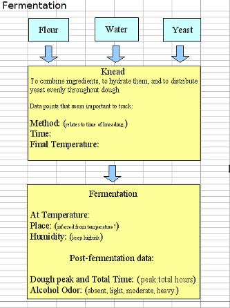Fermentation Flow Chart.
